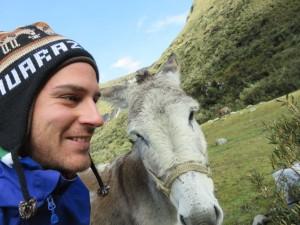 Nos amies les mules